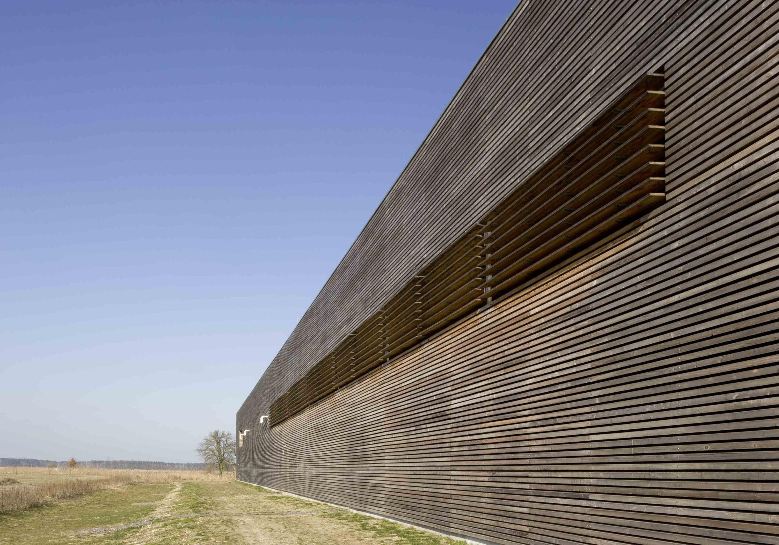 Fassade aus Lärchenholzlamellen