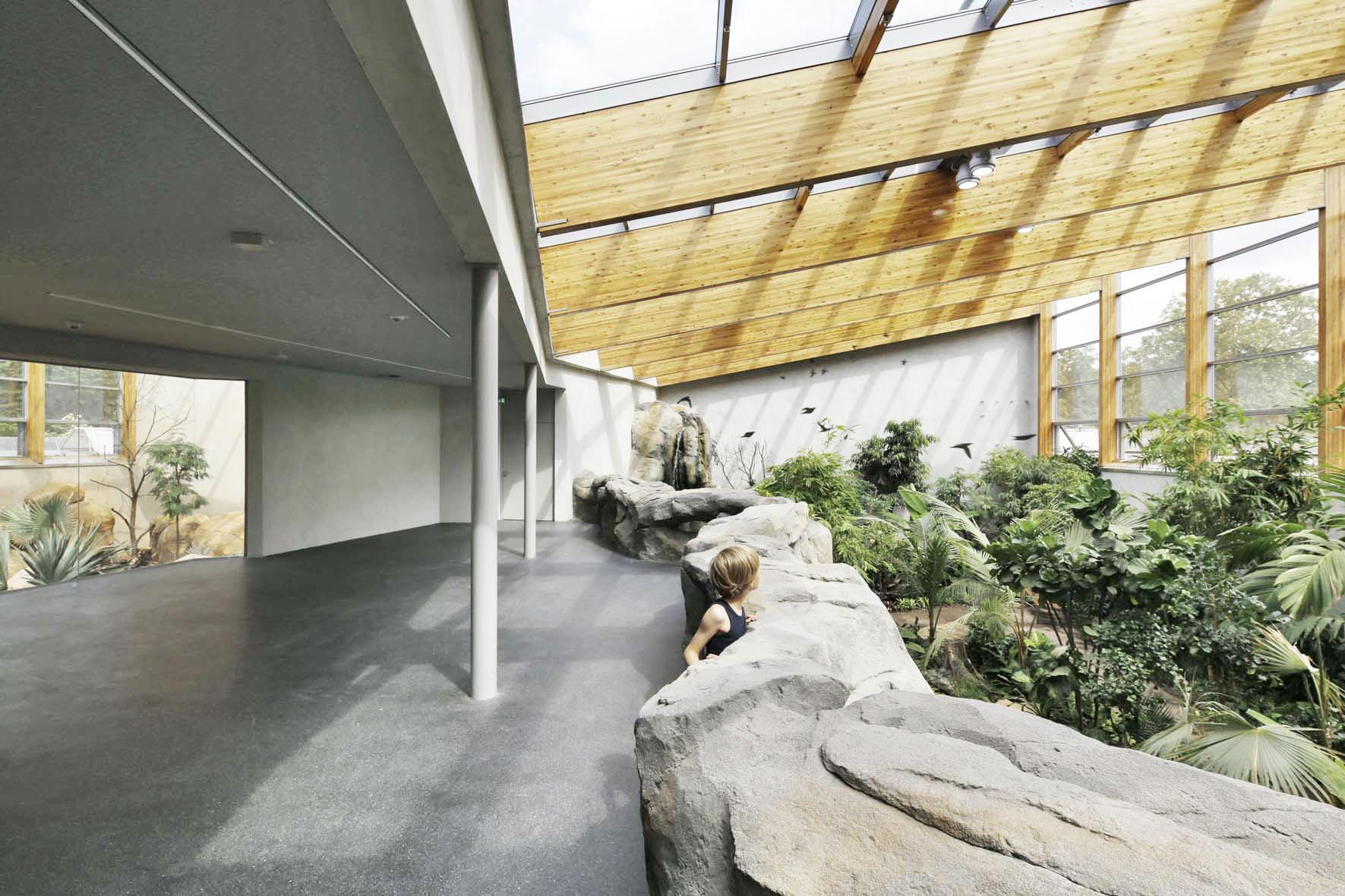 Freiflughalle Regenwald